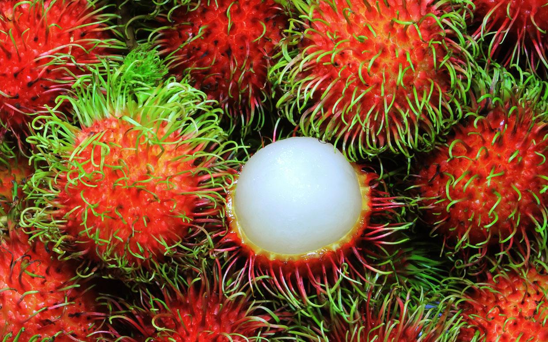rambutan tropical fruit bali