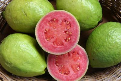 tropical fruit bali guava
