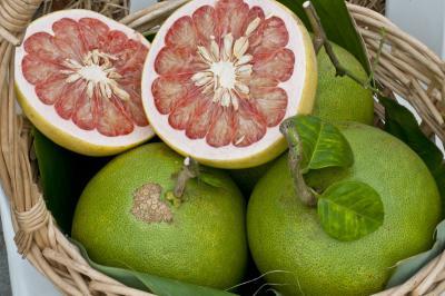 tropical fruit bali pomelo