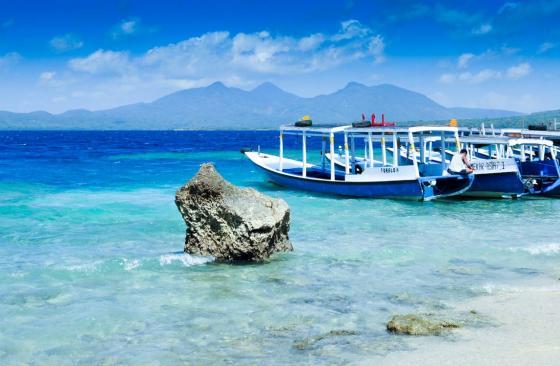 Menjangan island bali snorkeling